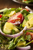 Organic Green Avacado and Tomato Salad. With Onions Royalty Free Stock Images