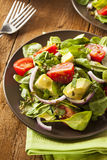 Organic Green Avacado and Tomato Salad. With Onions Royalty Free Stock Photography