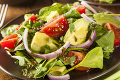Organic Green Avacado and Tomato Salad Royalty Free Stock Photos