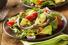 Organic Green Avacado and Tomato Salad. With Onions Royalty Free Stock Photo