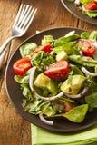 Organic Green Avacado and Tomato Salad. With Onions Stock Photography