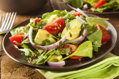 Organic Green Avacado and Tomato Salad Stock Photo