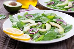 Organic Green Avocado and Spinach Salad with Red Onion Stock Image
