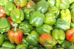 Organic Green Bell Pepper. Bunch of Organic Green Bell Pepper Royalty Free Stock Images