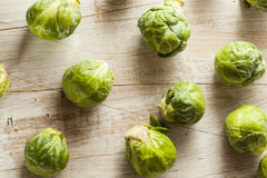 Organic Green Brussel Sprouts. Ready to Cook Royalty Free Stock Images