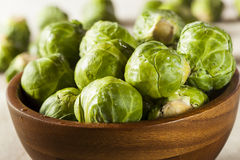 Organic Green Brussel Sprouts. Ready to Cook Stock Photography