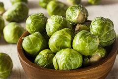 Organic Green Brussel Sprouts. Ready to Cook Royalty Free Stock Photography