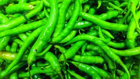 EXOTIC ORGANIC REFRESHING GREEN CHILIES stock photos