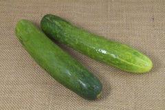 Organic green cucumber Stock Photos