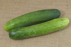 Organic green cucumber Royalty Free Stock Photography