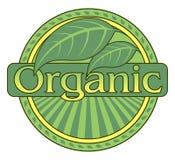 Organic Green Design With Leaf Border Stock Photo