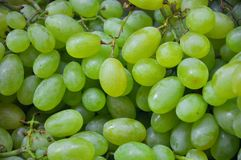 Organic green grapes in a market  Stock Photos
