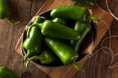 Organic Green Jalapeno Peppers Stock Image