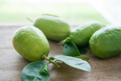 Organic green lemons on wood background Stock Photos