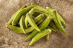 Organic Green Okra Vegetable Stock Photo