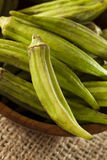 Organic Green Okra Vegetable Stock Image