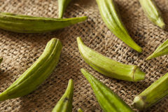 Organic Green Okra Vegetable Stock Photography