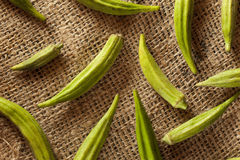 Organic Green Okra Vegetable Stock Image