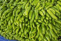 Organic green pepper Stock Image