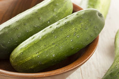 Organic Green Pickle Cucumbers Stock Image