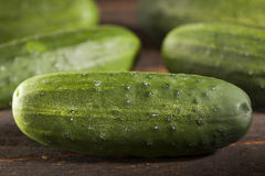 Organic Green Pickle Cucumbers Royalty Free Stock Photos