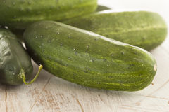Organic Green Pickle Cucumbers Royalty Free Stock Images