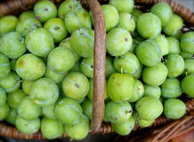 Organic Green Plums Royalty Free Stock Photo