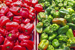 Organic green and red sweet peppers Royalty Free Stock Photos