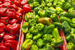 Organic green and red sweet peppers Stock Images
