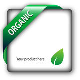 Organic green shiny corner ribbon Royalty Free Stock Photos