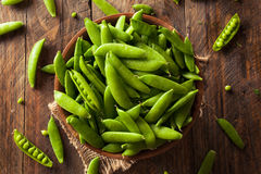 Organic Green Sugar Snap Peas Royalty Free Stock Photography