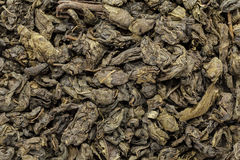 Organic Green Tea (Camellia sinensis) dried whole leaves. Stock Photography