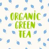 Organic green tea lettering, organic eco food logo, emblem, icon, natural product design with leaf on background, Vector illustrat royalty free illustration