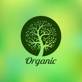 Organic green tree logo, eco emblem, ecology Stock Photography