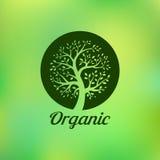 Organic green tree logo, eco emblem, ecology. Natural symbol, vector illustration Stock Photography