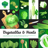 Organic Green Vegetables Banners Composition Poster royalty free illustration