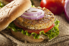 Organic Grilled Black Bean Burger Royalty Free Stock Images