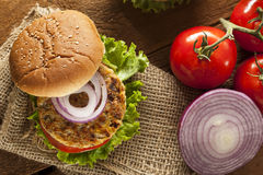 Organic Grilled Black Bean Burger Royalty Free Stock Photo