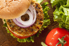Organic Grilled Black Bean Burger Stock Photos