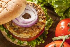 Organic Grilled Black Bean Burger Stock Image