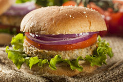 Organic Grilled Black Bean Burger Stock Photography