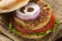 Organic Grilled Black Bean Burger Royalty Free Stock Photos