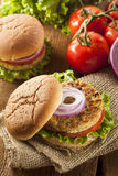 Organic Grilled Black Bean Burger Stock Photo