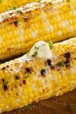 Organic Grilled Corn on the Cob Stock Image
