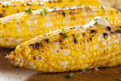 Organic Grilled Corn on the Cob Royalty Free Stock Photos