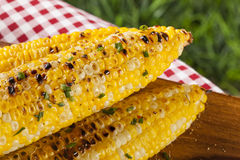 Organic Grilled Corn on the Cob Stock Images