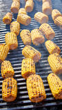 Organic Grilled Corn Stock Photo