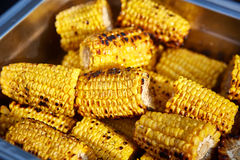 Organic Grilled Corn Royalty Free Stock Photo