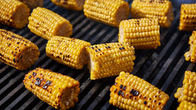 Organic Grilled Corn Royalty Free Stock Image