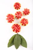 Organic guava slices royalty free stock photo
